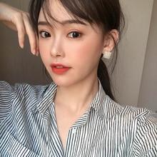 @ Taimi Jewelry Korean Frosty Style Earrings Women's Simple Graceful Online Influencer High-Grade Ea