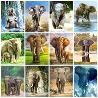 Evershine     Kit de peinture diamant theme elephant et animaux  broderie complete 5D  perles carrees ou rondes  points de croix  a faire soi-meme  decoration dinterieur  cadeau