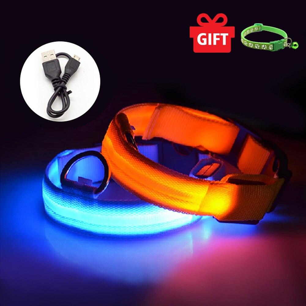 Collar de Perro Led con carga USB, antipérdida/evitar daños en el coche,...