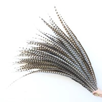 hot sale 100pcslot natural pheasant feathers 40 110cm16 44 inch christmas party diy decoration feathers for crafts
