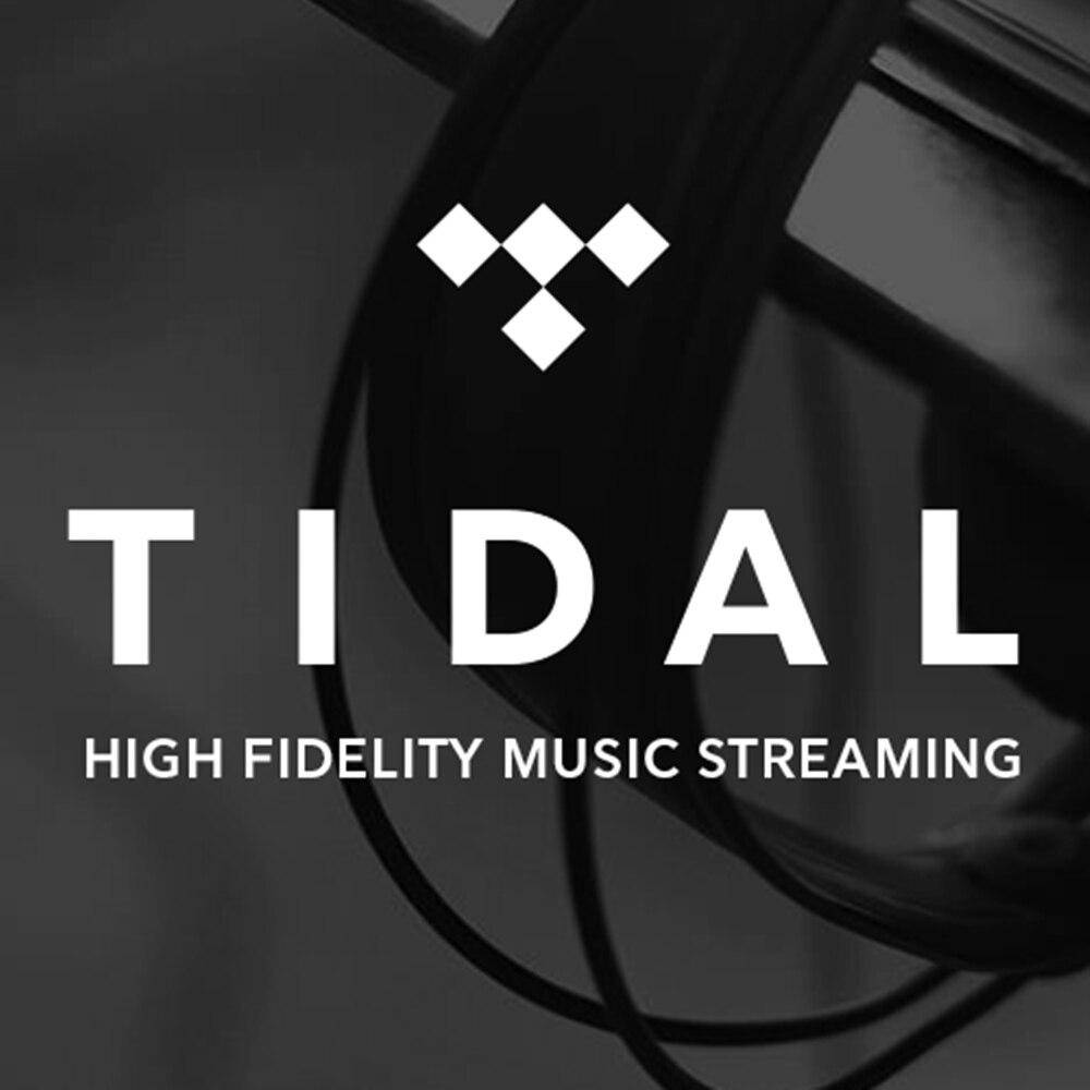 6 meses de garantía TIDAL HiFi premium música sin pérdidas sin anuncios fuera de línea cuentas de marea y contraseña