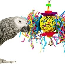 Jouets danimaux domestiques perroquet Cage à oiseaux amusant cloche étoile perruche pour boule   Jouet à mâcher pour animaux de compagnie, fournitures de calatile violette