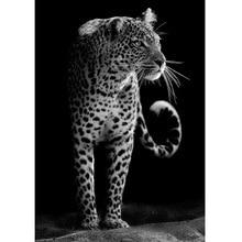أبيض وأسود ليوبارد الماس اللوحة كامل جولة الماس الفسيفساء الراين من الصور 5d Diy بها بنفسك الماس التطريز الحيوانات