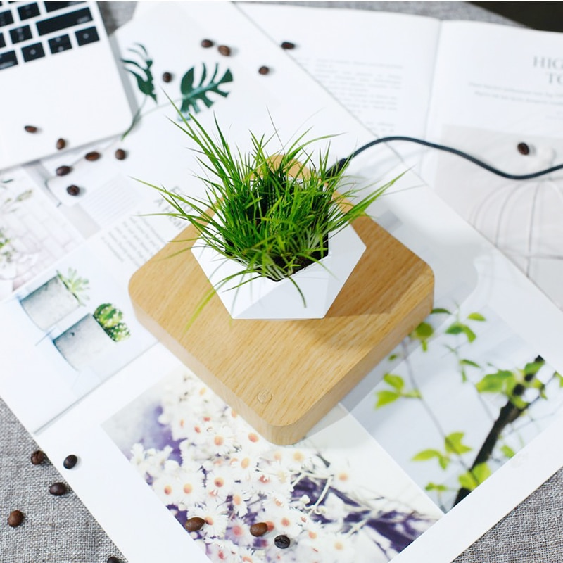 Levitating Plant Pot, Magical Floating Bonsai Pot, Magnetic Suspension Air Plant Pot, Potted Plant Home Desk Decor in Flower Pot enlarge