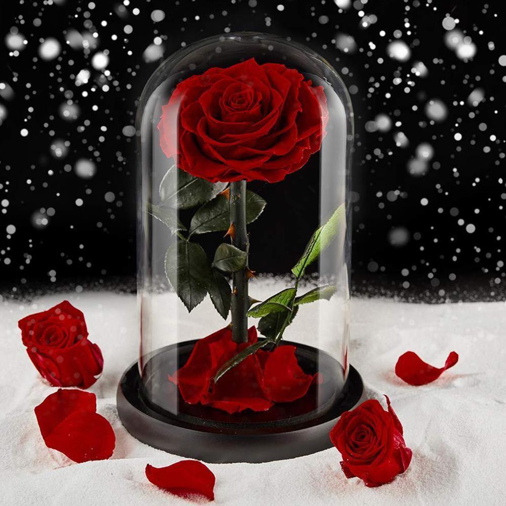 Protectores de decoración de cúpula de vidrio de sobremesa, adornos de flores secas, campana de artesanía hecha a mano, tarro con Base de madera de Color y luz LED para pies