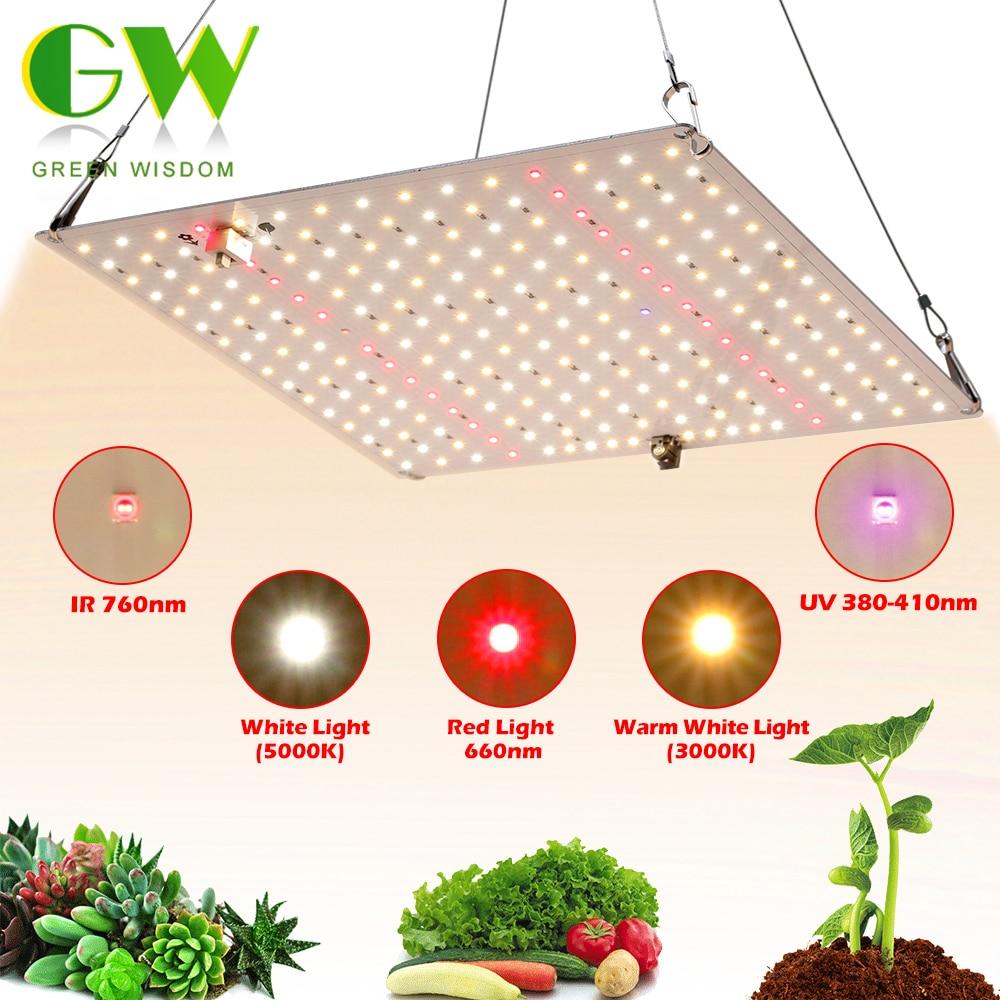 سامسونج LM281B الكم LED تنمو ضوء 1000 واط الطيف الكامل فيتو مصباح للنباتات الداخلية الزهور الدفيئة شتلات النمو ضوء