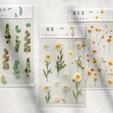 Flower series Decorative PVC Stickers Scrapbooking Stick Label Diary Stationery Album Retro plant Eucalyptus sticker