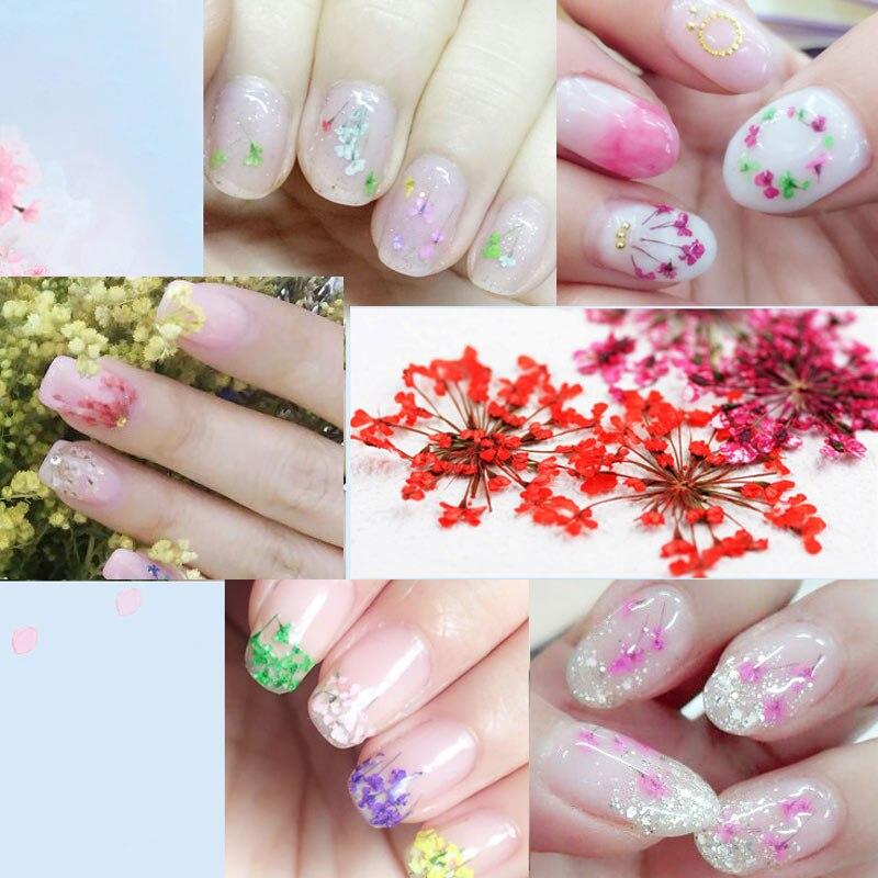 Flores secas variadas DIY para uñas, 12 colores con botella, decoración 3D de flores secas, pegatinas para uñas de manicura KG66