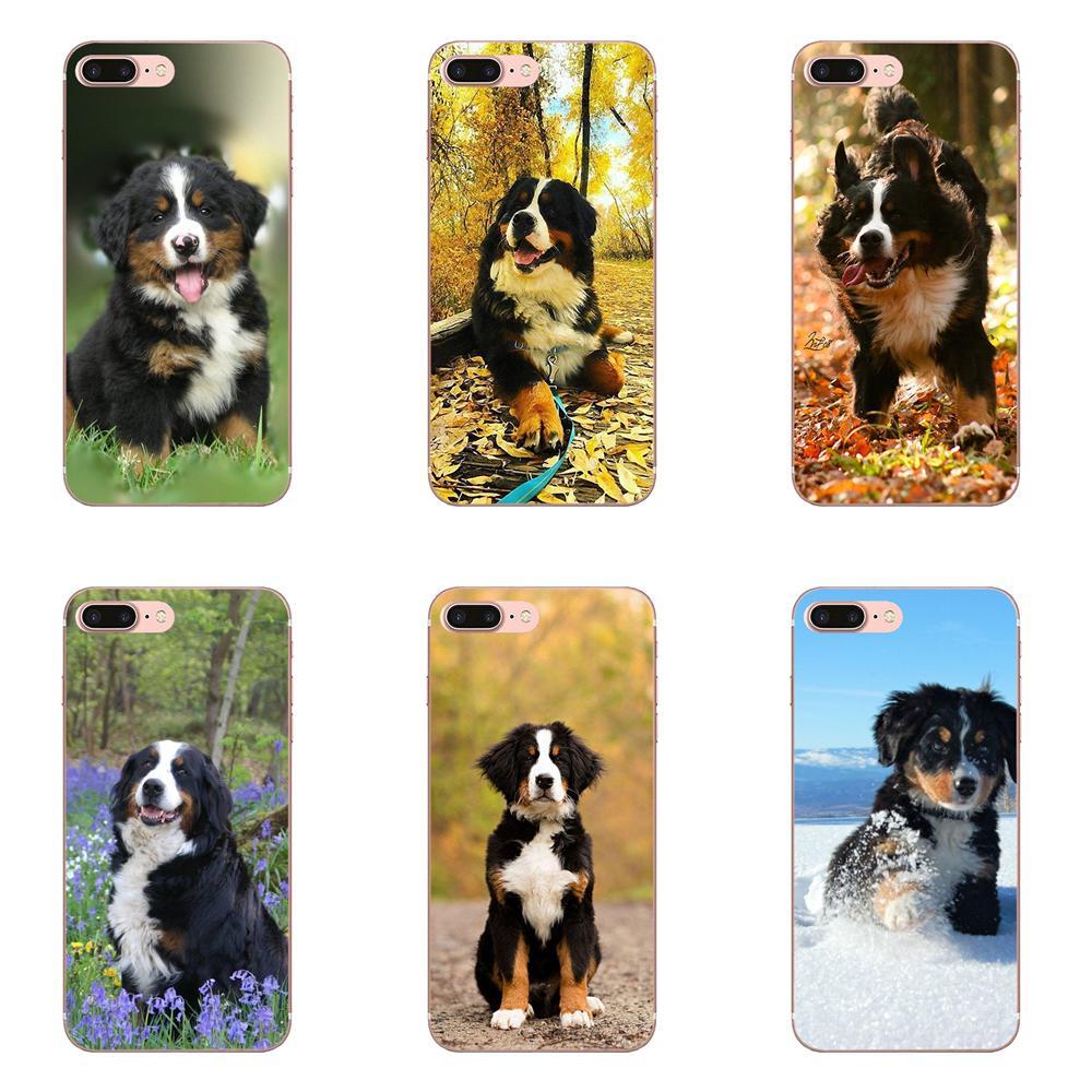 Funda de teléfono de TPU suave a la moda perro de montaña bernés para Apple iPhone 4 4S 5 5C 5S SE SE2 6 6S 7 8 11 Plus Pro X XS Max XR