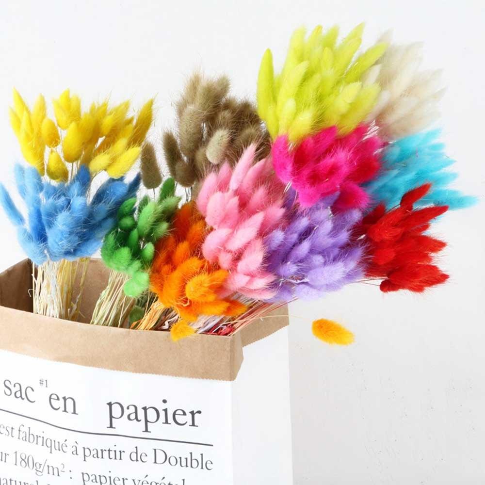 Bouquet de fleurs naturelles séchées 30 pièces/lot   Bouquet de fleurs colorées pour décor de mariage, Bouquet dherbe pour queue de lapin, décoration artificielle pour la maison