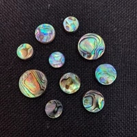 3pcs abalone beads shell beads round one side polished non porous diy jewelry making necklace bracelet earring accessories