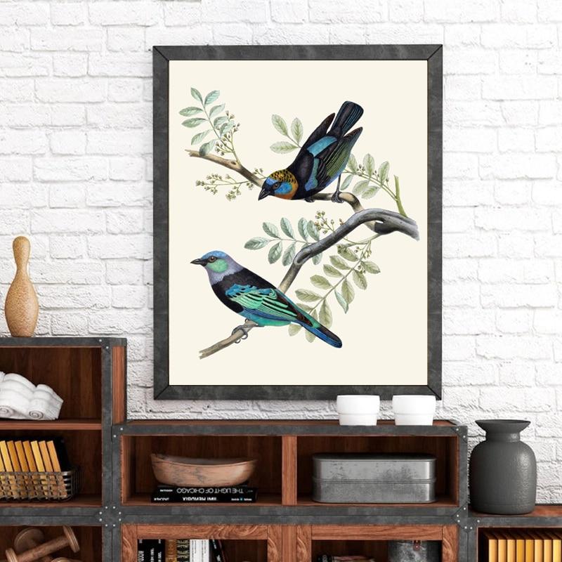 Nadruk z ptakiem złoty z kapturem i zamaskowany Tanagers Vintage ilustracja plakat ptak obraz ścienny na płótnie wystrój salonu