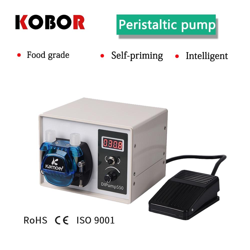 intelligent mini pump, small food grade circulating self-absorbent large flow pump, automatic Peristaltic pump, 220v DC pump