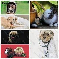 Peinture en diamant 5D pour animaux de compagnie  broderie complete  strass carres ou ronds  lapin  chiens  point de croix  decoration dinterieur