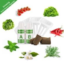 Ecoo Grower, cubos de esponja, cesta de plástico para alimentos de plantas, ecológica, hidropónica, sistema de cultivo sin aire, accesorios
