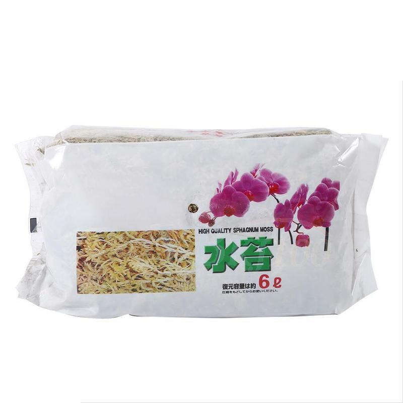 Sustrato de cultivo en maceta de 6L, musgo de agua para Bonsai,...