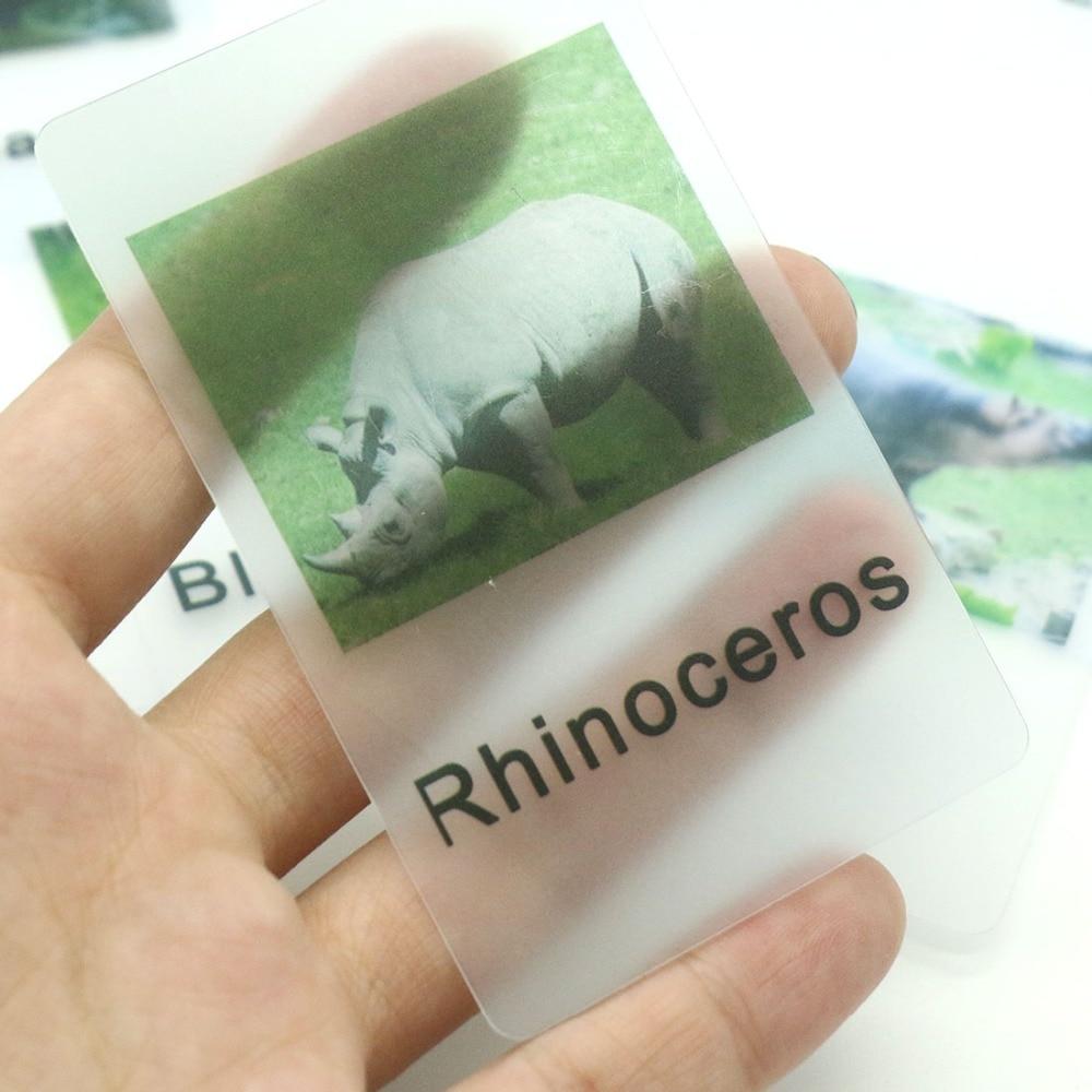 Materiales de idioma Montessori, cartas de partido de animales de África, juguete de aprendizaje Montessori para niños pequeños B1344T