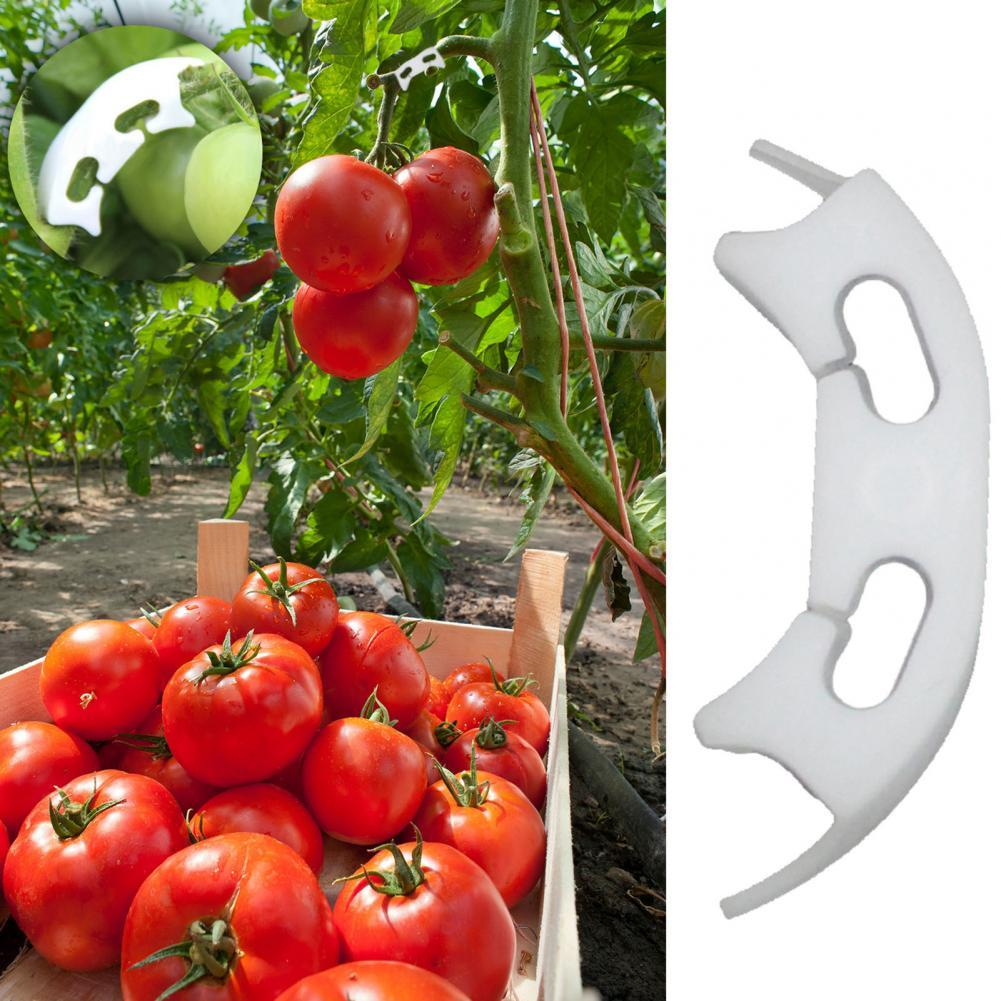 50/100Pcs Plant Tomato Vine Growth Anti-bending Fixing Clip Clamp Garden Supply
