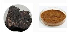 240 pièces Shilajit résine haute qualité Pure Mumijo Mumio Mumie Mumiyo minéral antioxydant