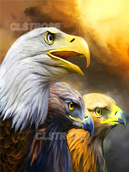 5D Diy Diamond Painting Eagle Home Decoration In The Sunset Customizable Diamond Embroidery Handmade Gift Square Diamond Round  - buy with discount