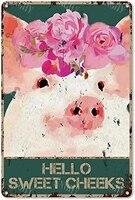 Citation drole de salle de bain en metal  signe en etain  decor mural Vintage Hello Sweet Cheeks Pig avec fleurs  signe en etain