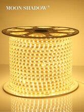 MOONSHADOW شريط إضاءة مقاوم للماء مصلحة الارصاد الجوية 5050 السوبر مشرق النيون لغرفة ضوء متعدد الألوان مثبطات المطاط شرائط مصباح 220 فولت الاتحاد الأوروبي التوصيل
