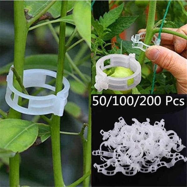 50/100/200 db műanyag növénytartó kapcsok a paradicsom függő - Kerti termékek - Fénykép 5