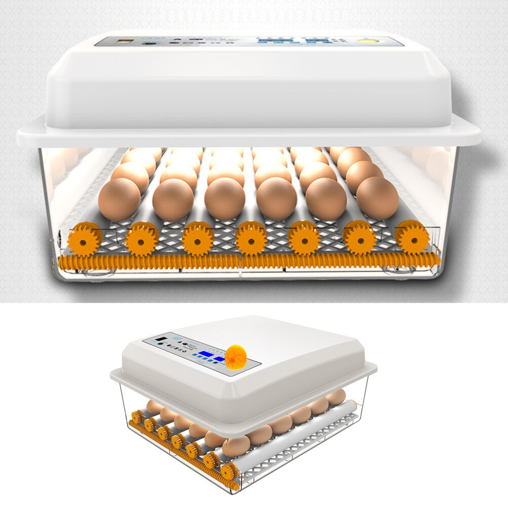 1 caja de incubación doméstica con 24 ranuras, caja de incubación de huevos, contenedor de cría con enchufe AU/US/UK/EU (potencia única/Dual)