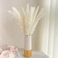Bulrush     fleurs sechees naturelles  branches de plantes artificielles colorees  herbe des marais  decoration de maison pour mariage
