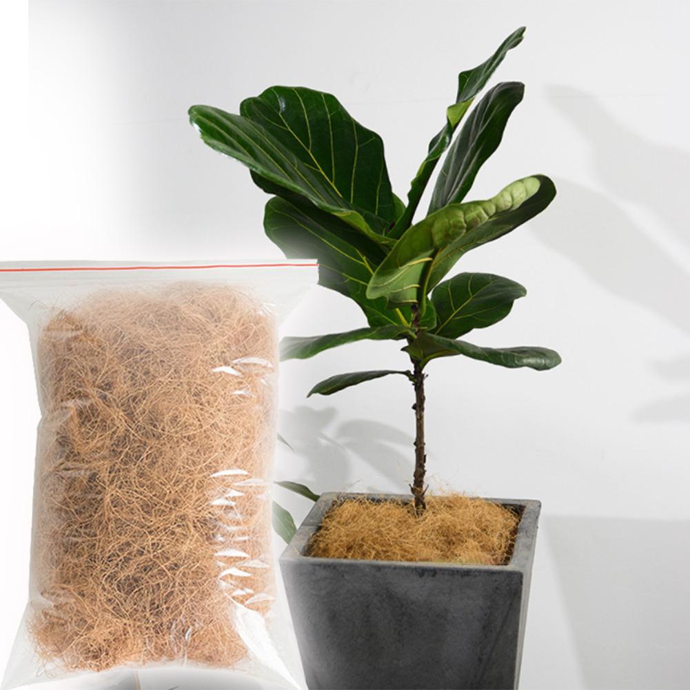 Cubierta Natural de fibra de coco para plantas de bonsái de Coco para la decoración de plantas de jardinería maceta