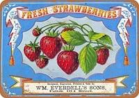 Ufcell     signe retro Vintage 8x12  fraises et baies fraiches  Fruits amusants  legumes  nourriture  doux  decor mural dete  decor pour la maison  868