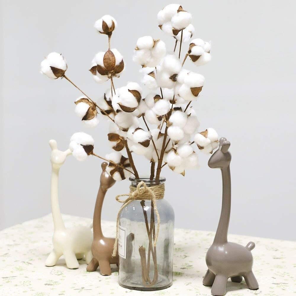 Tallos de algodón kapok secos naturales estilo de granja flores secas plantas de algodón artificiales flores DIY decoración para fiesta de boda