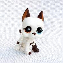 Animalerie lps Anime jouets support petit cheveux courts chat rose noir ancien Original chien teckel berger grand danois livraison gratuite