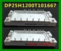 DP25F1200T101666 DP25H1200T101667 MODULES