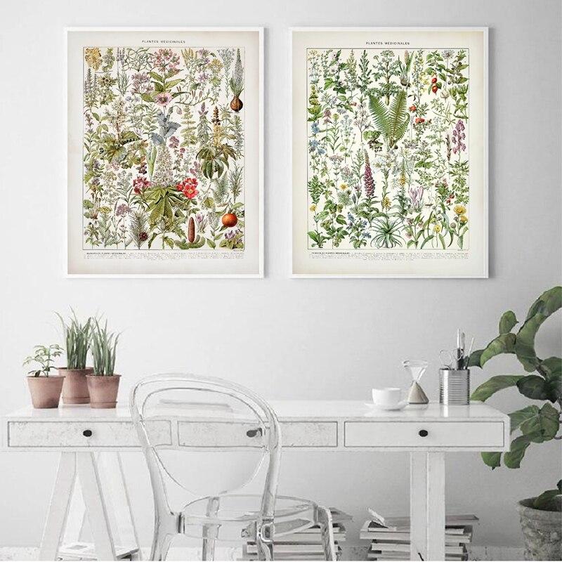 Ботанические лекарственные растения винтажные постеры и принты Мак Лисий перчатка гиссоп Лаванда Late 1800s Repro Холст Картина декор стен