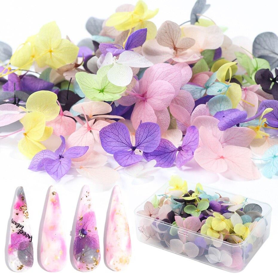 100 шт , сушеные цветы , украшения для ногтей, сделай сам, натуральный прессованный цветочный гель, наклейки для маникюра, лист гортензии, 3D декор, Типсы для ногтей LA1505