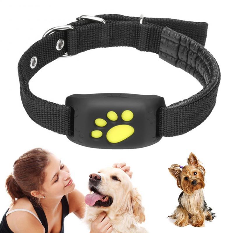 Collier de traqueur danimal familier de localisateur de GPS danimal familier pour le chat de chien AGPS LBS SMS plaçant le dispositif de suivi de geo-clôture Z8-A 2020 Smart imperméable
