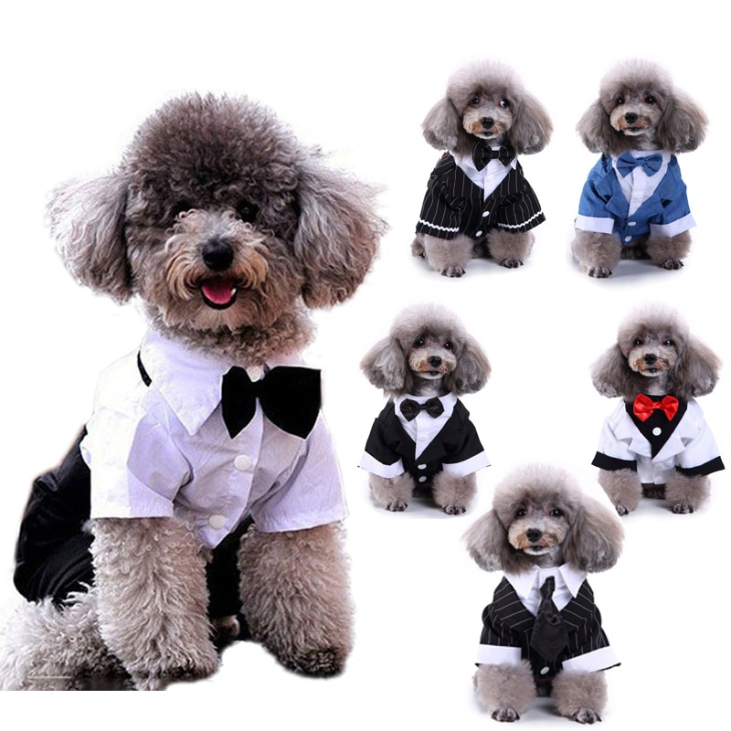 Abrigo de estilo occidental para hombre, ropa para perro mascota, traje de boda y pajarita, abrigo de cuatro patas para perro cachorro, chaquetas, traje S-XXL