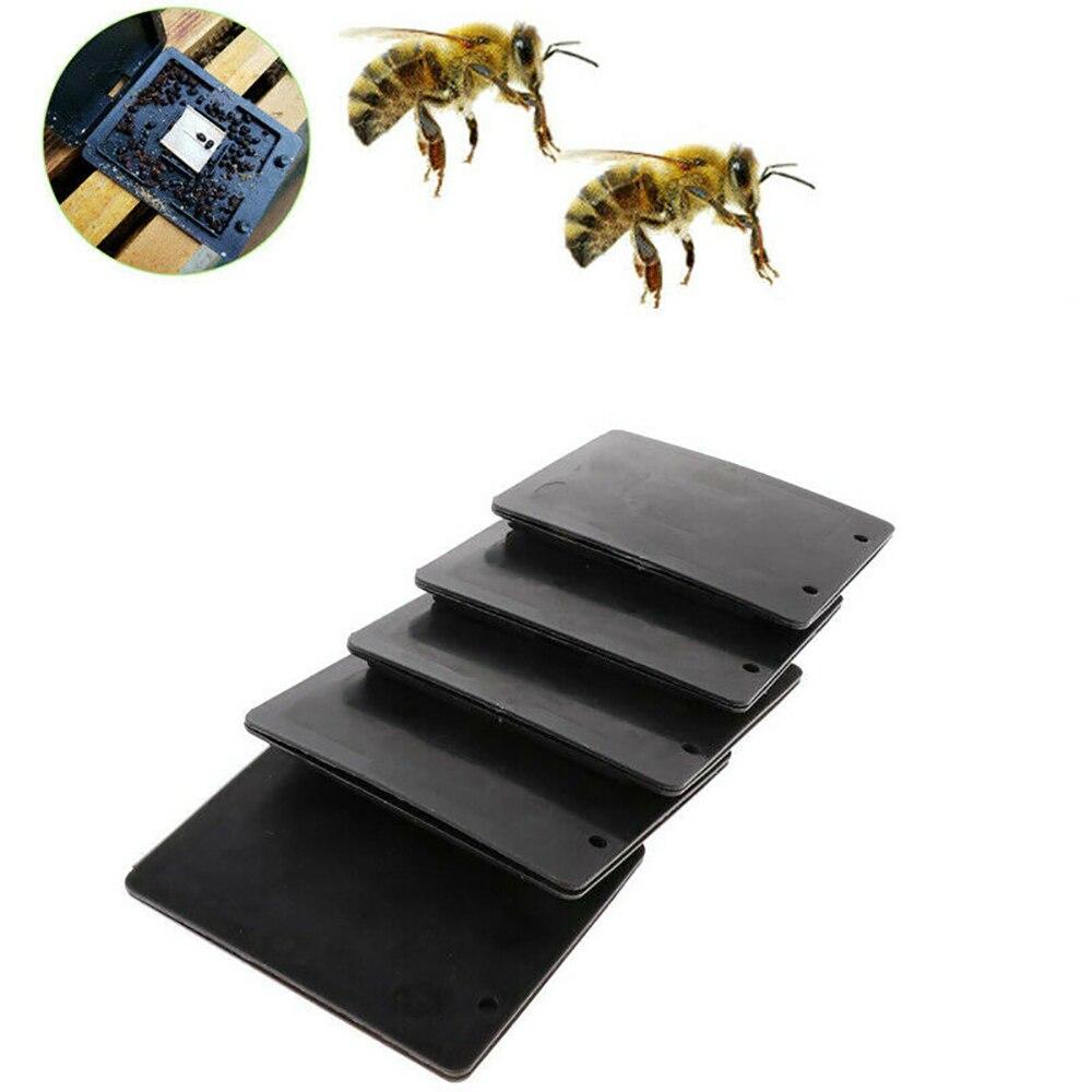 15 Uds escarabajo granero escarabajo de la colmena trampa escarabajo captura insectos trampa caja