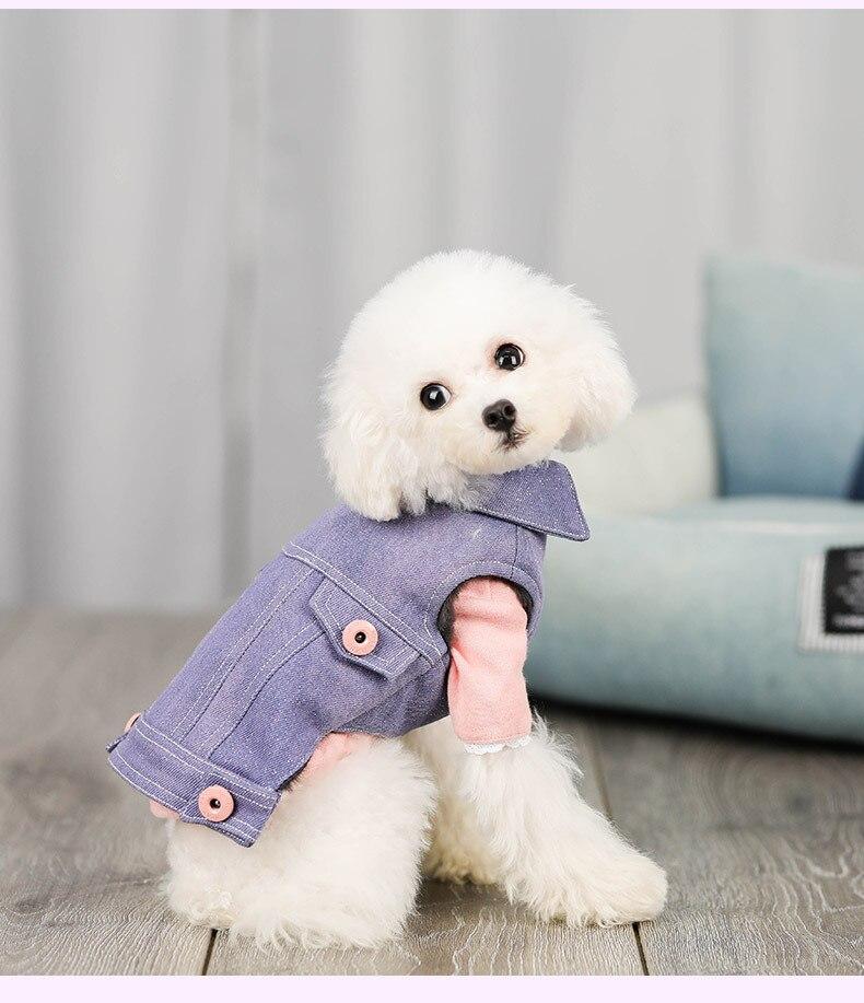 Collar de perro, Ropa de perro Chaleco de invierno cálido... chaqueta Reversible...