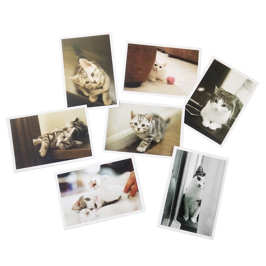 6 pacsS/lot Kawaii dibujos animados gato serie de tarjetas postales grupo tarjeta de felicitación tarjetas de regalo Oficina papelería Navidad y nuevo regalos de año