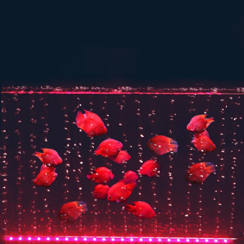 Aquarium Fish Tank Light Waterproof LED Aquatic Air 5050 RGB LED Submersible Lamp + Increase Oxygen Air Pump + IR Remote  EU/US