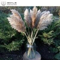 2021 nouveaute Mariage Utiliser pampa fleurs bouquet 100  plantes naturelles noel decor bouquet de fleurs sechees pour la decoration de la maison