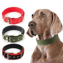 Collar de nailon para perros de 6 colores con correa de cuello opcional ajustable en 4 tamaños para cachorros pequeños y medianos. También para gatos y mascotas