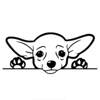 cute chihuahua dog car sticker automobiles motorcycles exterior accessories vinyl decals for honda lada bmw audi boat laptop