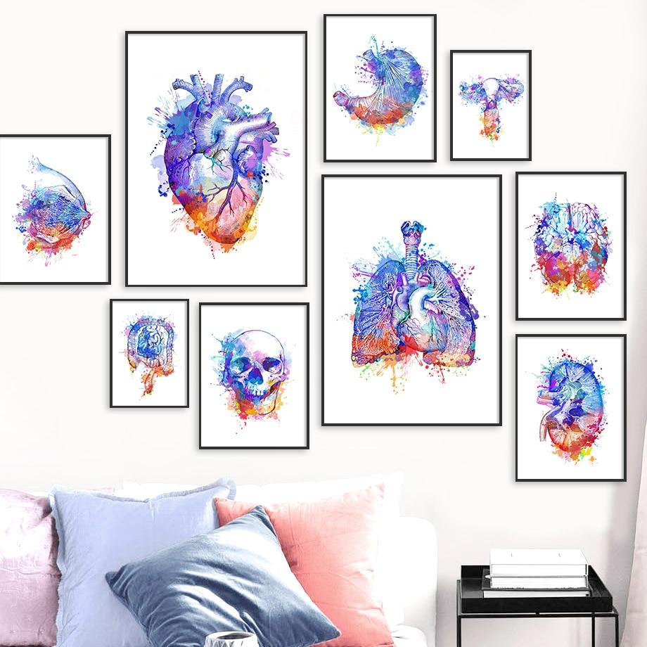 Colorido anatomía del cerebro corazón riñón pecho cuadro sobre lienzo para pared carteles nórdicos e impresiones cuadros de pared médicos decoración de oficina