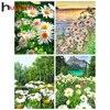 Huacan Voll Platz/Runde Diamant Malerei Kit Landschaft 5D DIY Stickerei Mosaik Daisy Blume Dekorationen Hause