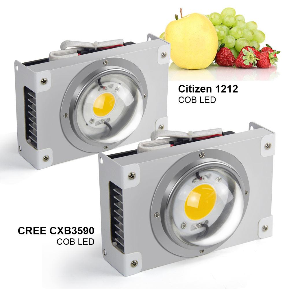Lámpara de Cultivo LED CREE CXB3590 COB de espectro completo 100W Citizen 1212, lámpara de Cultivo LED para tienda de interior, invernadero, planta hidropónica, flor