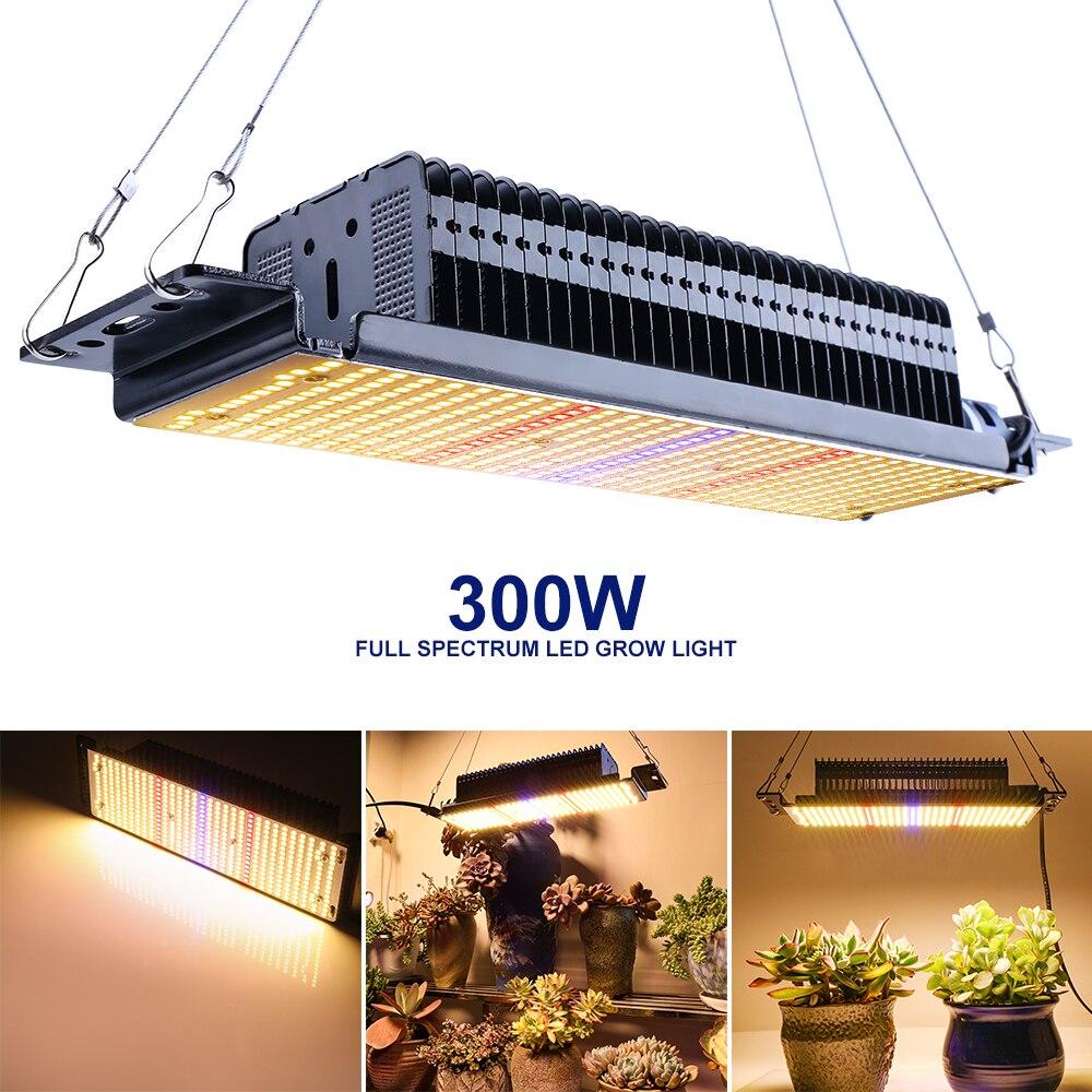 XRYL 5pcs RU DE CN 300W Full Spectrum Indoor Plants Flowers Vegetables Seedling Greenhouse Garden LED Grow Tent Complete Light enlarge