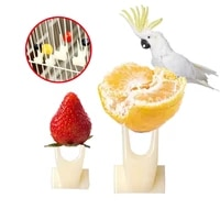bird non toxic resin fruit fork in cage 2size pet convenient feeder fruits meat and vegetables parrot parakeet palomas supplies